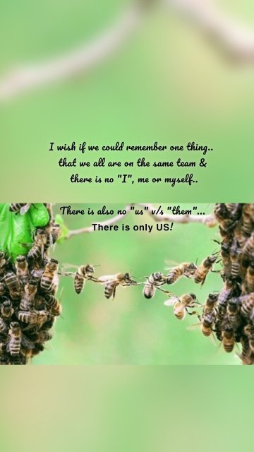"""I wish if we could remember one thing.. that we all are on the same team & there is no """"I"""", me or myself.. There is also no """"us"""" v/s """"them""""... 𝗧𝗵𝗲𝗿𝗲 𝗶𝘀 𝗼𝗻𝗹𝘆 𝗨𝗦!"""